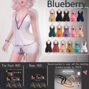 Blueberry - n21